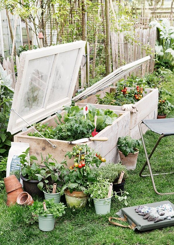 Diy garden projects the style files for Stylish vegetable garden