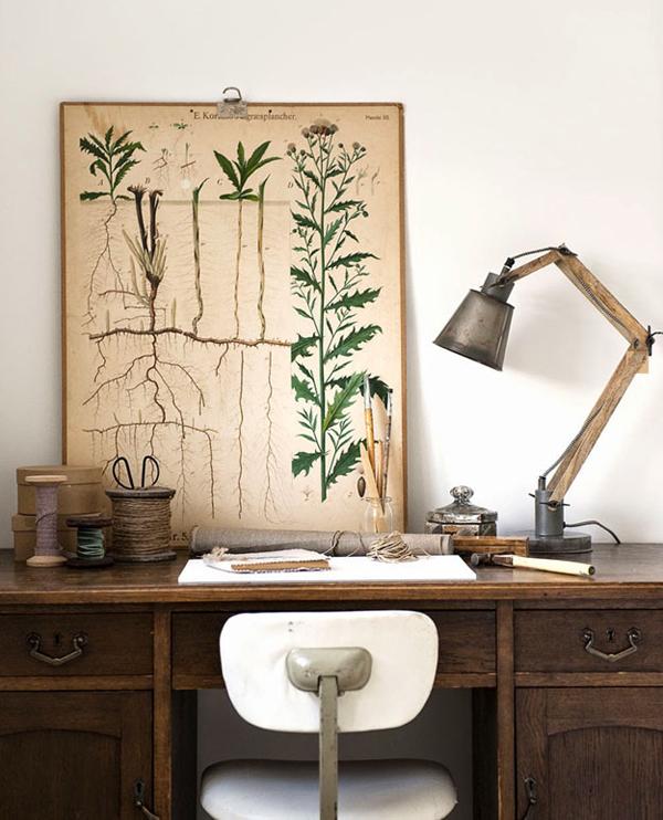 botanical-print-11