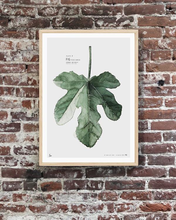 botanics5